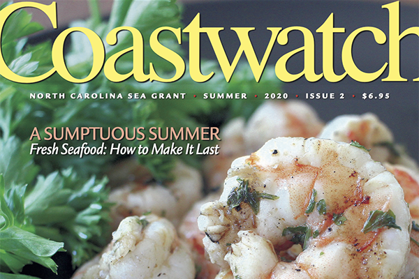 Cover of Summer 2020 Coastwatch magazine