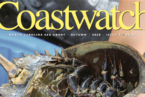 Image of the Autumn 2020 issue of Coastwatch, featuring a horseshoe crab