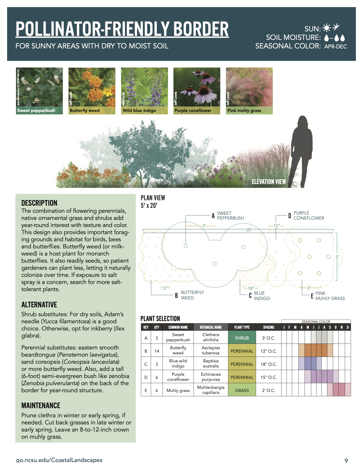 """An image of the """"Pollinator-Friendly Border"""" design"""